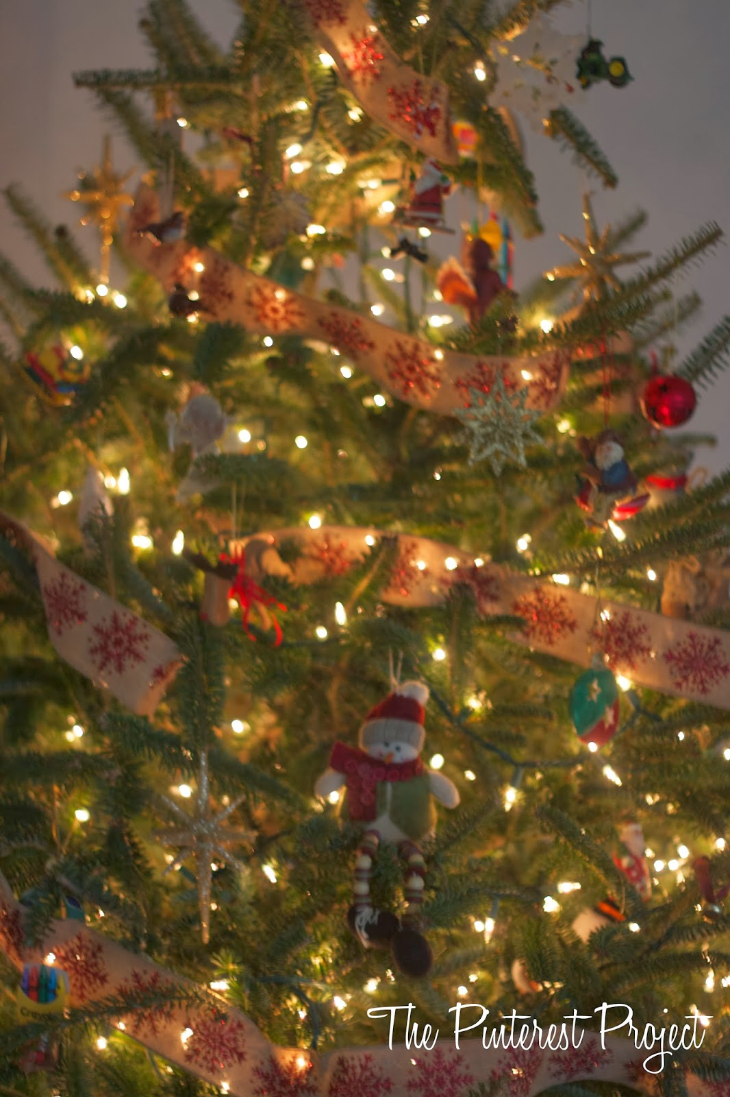 Where To Cut Down A Christmas Tree