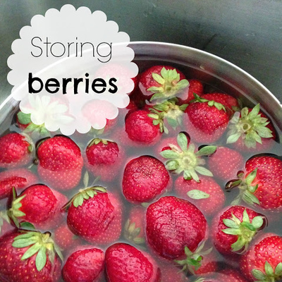 Trying to Store some Berries
